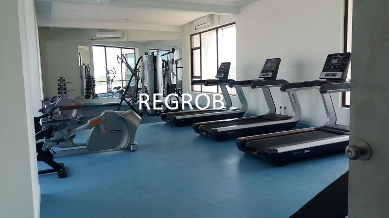 Ramky One Kosmos Gachibowli Hyderabad gym