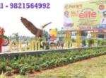 Peram Aditya Elite Polipalli Vizag Open Plots