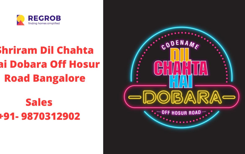 Shriram Codename Dil Chahta Hai Dobara